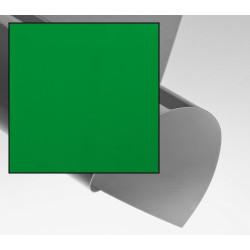 Dos de couvertures Chromolux A4 - VERT